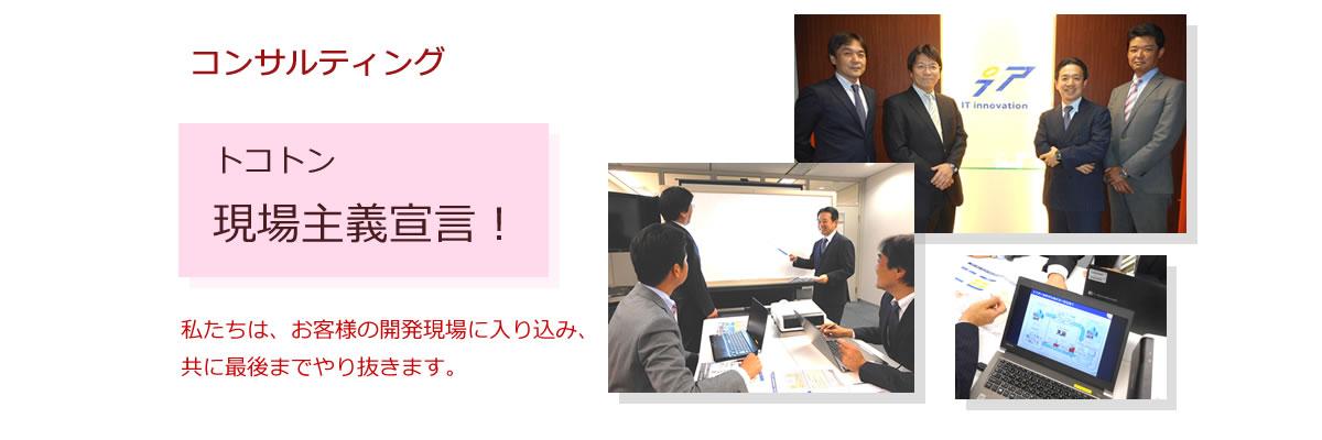 コンサルティング ITアーキテクチャ、ビジネスアナリシス、プロジェクトマネジメント/PMO支援など