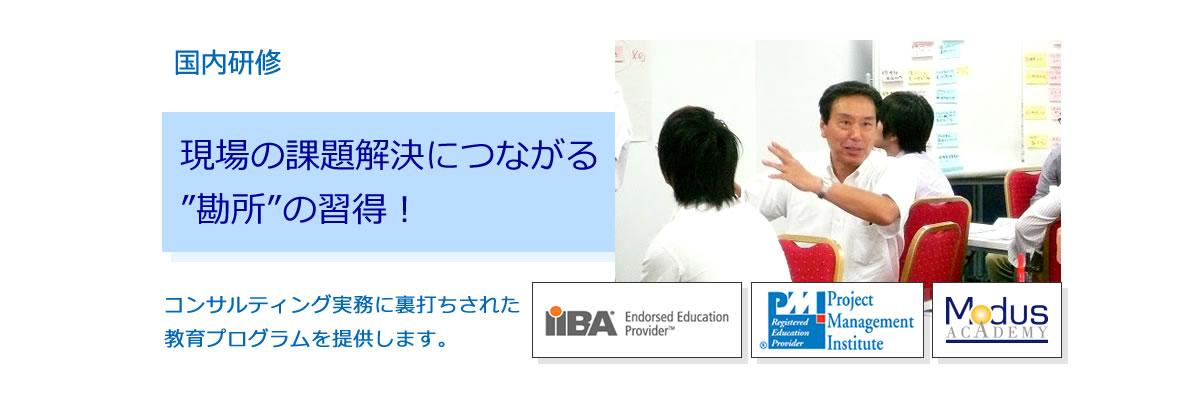 国内教育 ITアーキテクチャ、ビジネスアナリシス、プロジェクトマネジメント/PMO系の研修を提供